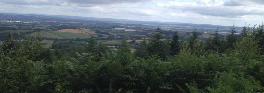 69e592ee8 Haldon Forest – Alice Staniford